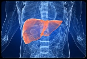 liver toxicity steroids