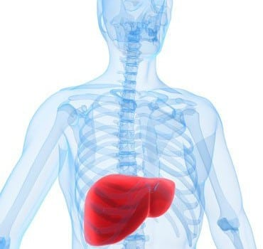 Steroids and Liver Toxicity – Part 1