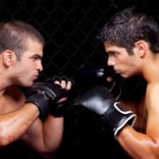 Ultimate Diet for Mixed Martial Arts
