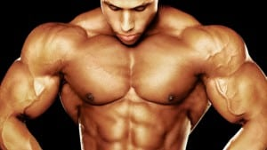 steroid muscle stack