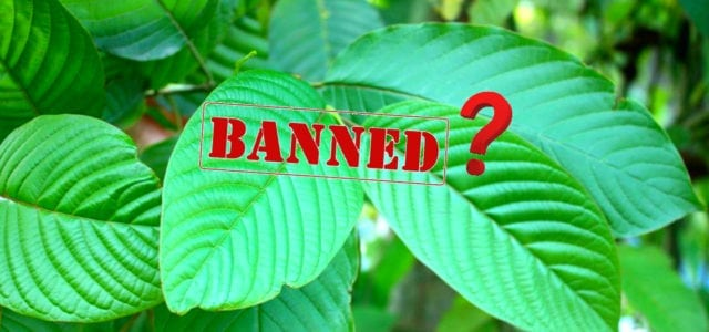 DEA Delays Banning the Herbal Supplement Kratom as Schedule 1 Drug