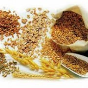 Grains for a Low-Carb Diet